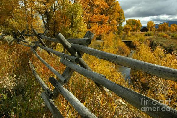 Jackleg Photograph - Grant Teton In Autumn by Jean-Louis Klein & Marie-Luce Hubert