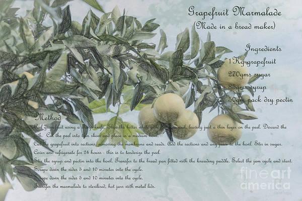 Photograph - Grapefruit Marmalade by Elaine Teague