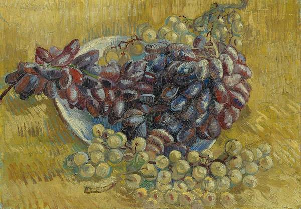 Painting - Grapes by Artistic Panda