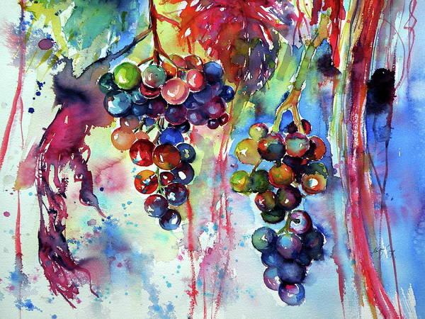Wall Art - Painting - Grapes Cd2 by Kovacs Anna Brigitta