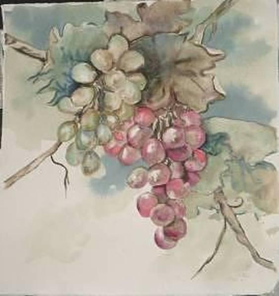Painting - Grapes by Diane Ziemski