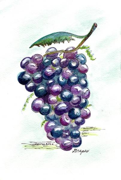 Wall Art - Painting - Grapes by Melody Allen