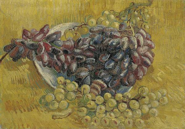 Painting - Grapes Paris, September - October 1887 Vincent Van Gogh 1853  1890 by Artistic Panda