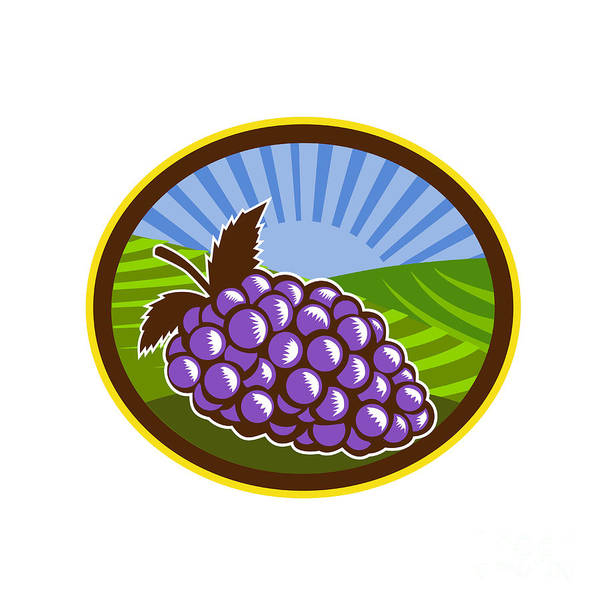 Orchard Digital Art - Grapes Vineyard Farm Oval Woodcut by Aloysius Patrimonio