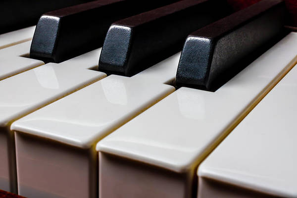 Wall Art - Photograph - Graphic Piano Keys by Garry Gay