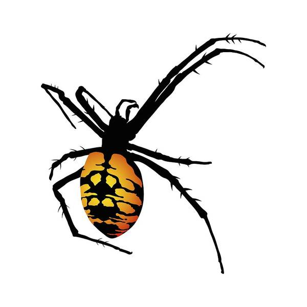 Digital Art - Graphic Spider Black And Yellow Orange by MM Anderson
