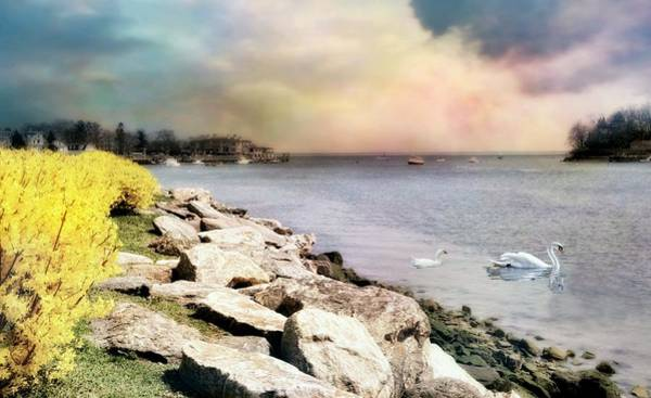 Wall Art - Photograph - Grass Island Harbor by Diana Angstadt