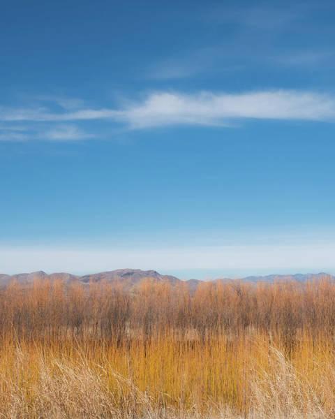 Wall Art - Photograph - Grass, Tree, Mountain, Sky by Joseph Smith