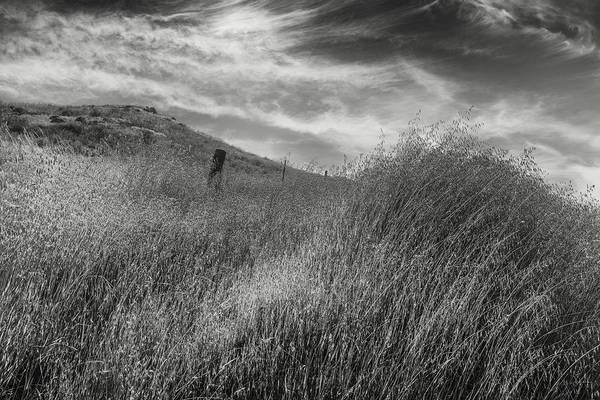 Wall Art - Photograph - Grassland by Joseph Smith