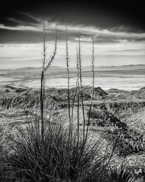 Wall Art - Photograph - Grasslands by Joseph Smith