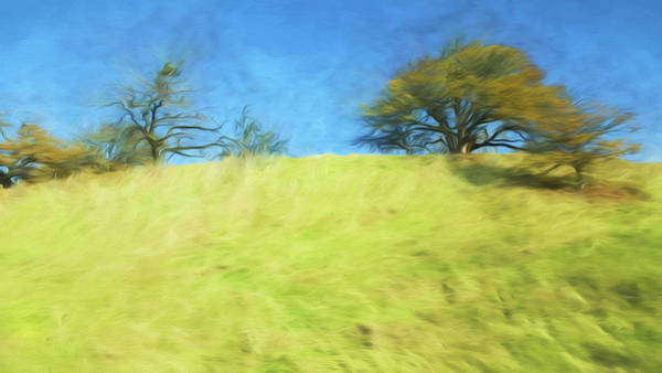 Wall Art - Painting - Grassy Hill by Bonnie Bruno