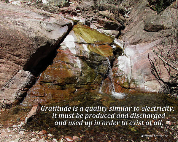 Digital Art - Gratitude Is Like Electricity by Julia L Wright