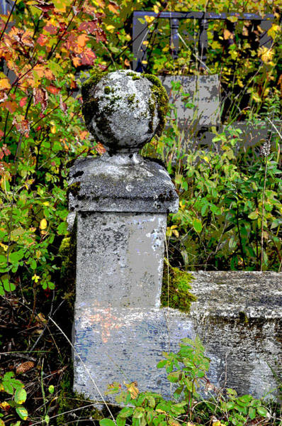 Haines Falls Photograph - Grave Marker by Cathy Mahnke