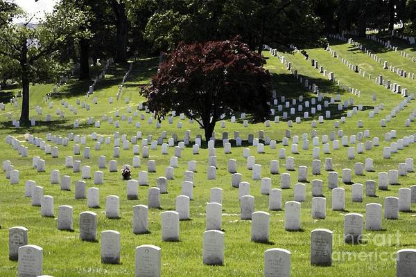 Digital Art - Graves At Arlington National Cemetery With Watercolor Effect by William Kuta