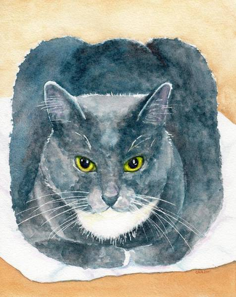 Painting - Gray And White Cat With Green Eyes by Carlin Blahnik CarlinArtWatercolor