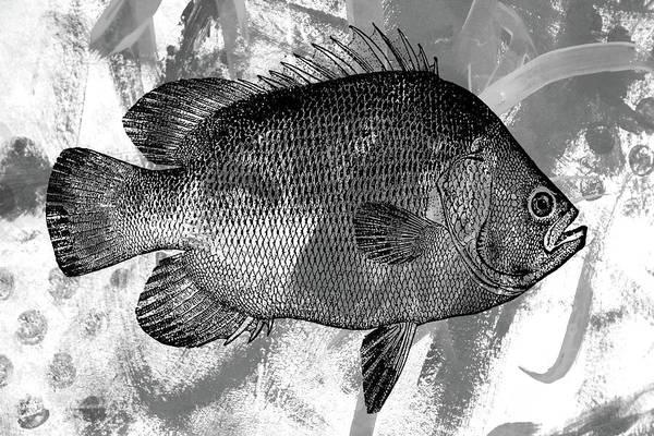 Grayscale Digital Art - Gray Fish by Nancy Merkle