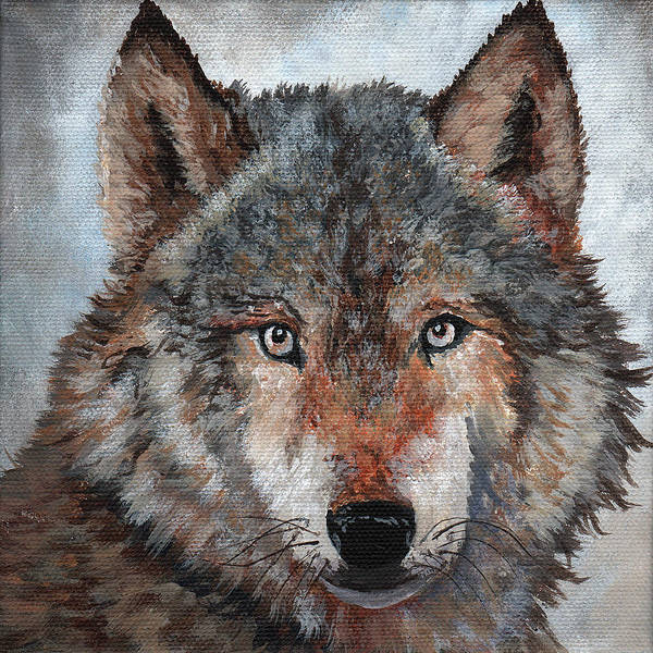 Wall Art - Painting - Gray Wolf by Timithy L Gordon