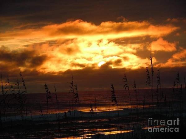 Grayton Beach State Park Photograph - Grayton Beach Sunset by Brenda Gray