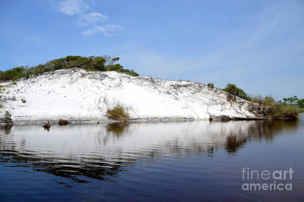 Grayton Beach State Park Photograph - Grayton Dune by Jan Prewett