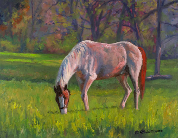 Wall Art - Painting - Grazing At Sunset by Mark Maritato