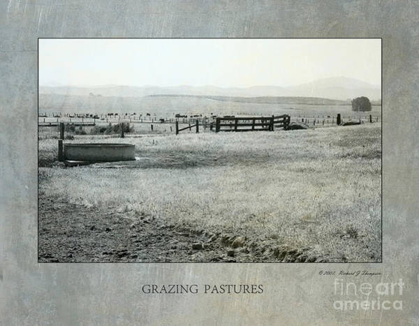 Photograph - Grazing Pastures by Richard J Thompson