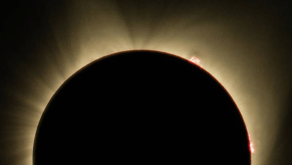 Photograph - Great American Eclipse Prominence 16x9 Totality Prominence 16x9 As Seen In Albany, Oregon. by John King