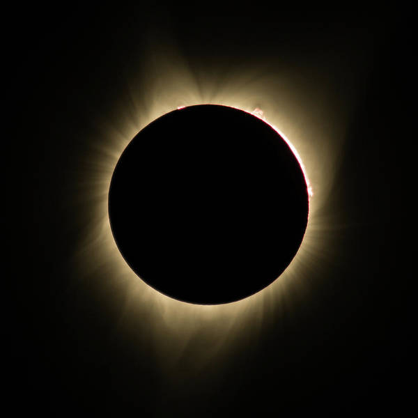Photograph - Great American Eclipse Totality Square by John King