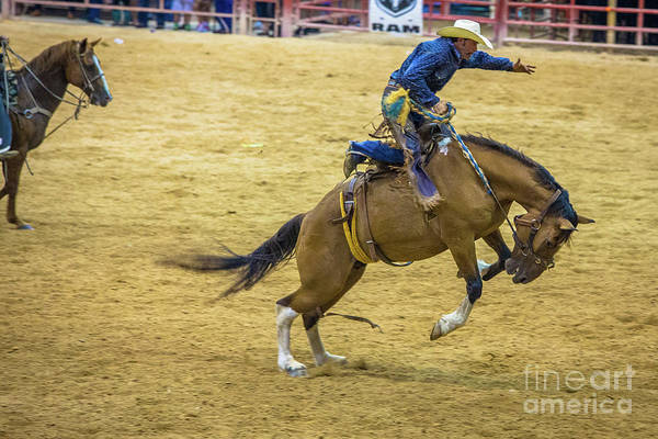 Prca Wall Art - Photograph - Great Balance And Form by Rene Triay Photography