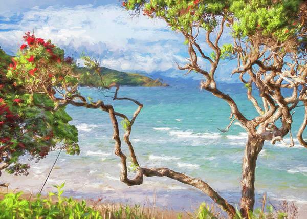 Wall Art - Photograph - Great Barrier Island New Zealand View Painterly by Joan Carroll