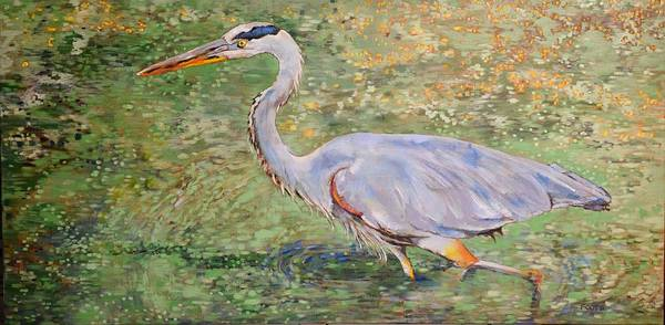 North American Birds Painting - Great Blue by Amber Foote