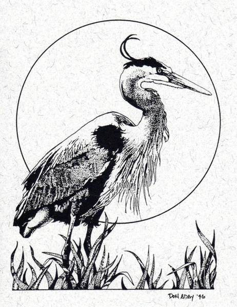 Great Blue Heron Drawing - Great Blue Heron by Donald Aday