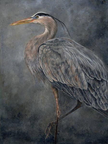 Great Blue Heron Drawing - Great Blue Heron by Edmund Price