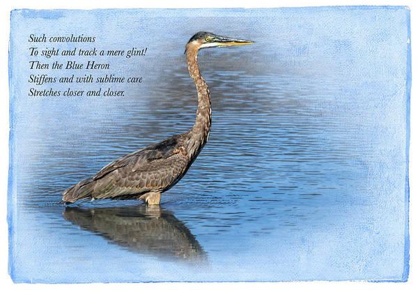 Japanese Poetry Wall Art - Digital Art - Great Blue Heron Fishing by John Williams