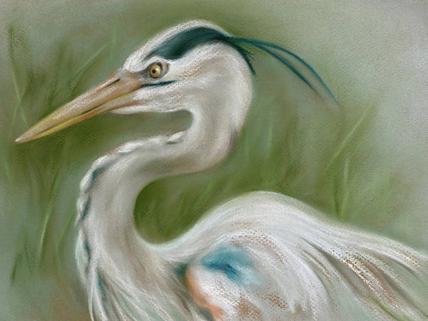 Pastel - Great Blue Heron by MM Anderson