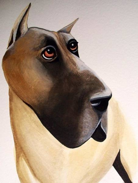Black Great Dane Painting - Great Dane by Anita Stone