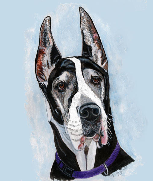 Black Great Dane Painting - Great Dane by Frances Gillotti