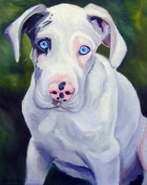 Wall Art - Painting - Great Dane Harlequin Puppy by Lyn Cook