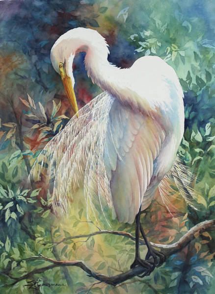 Wall Art - Painting - Great Egret by Sue Zimmermann