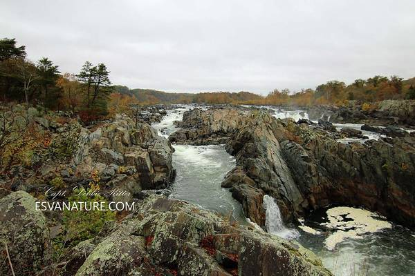 Photograph - Great Falls 9750 by Captain Debbie Ritter