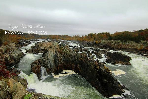 Photograph - Great Falls 9764 by Captain Debbie Ritter