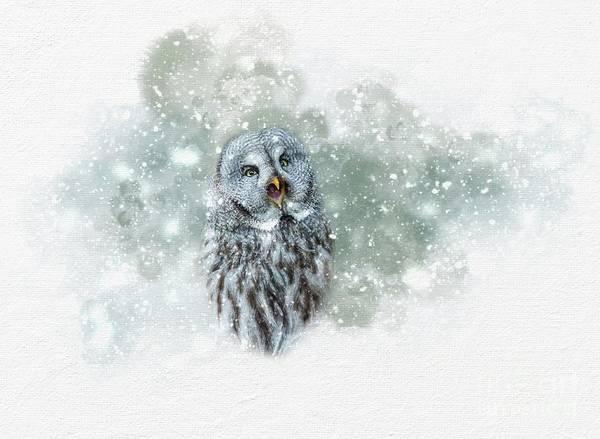 Great Grey Owl In Snowstorm Art Print