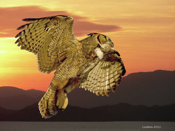 Photograph - Great Horned Owl At Sunrise by Larry Linton