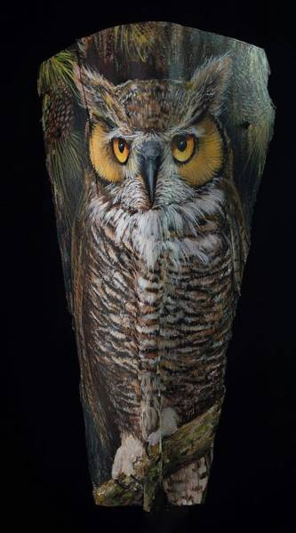 Painting - Great Horned Owl In A Pine Tree by Nancy Lauby