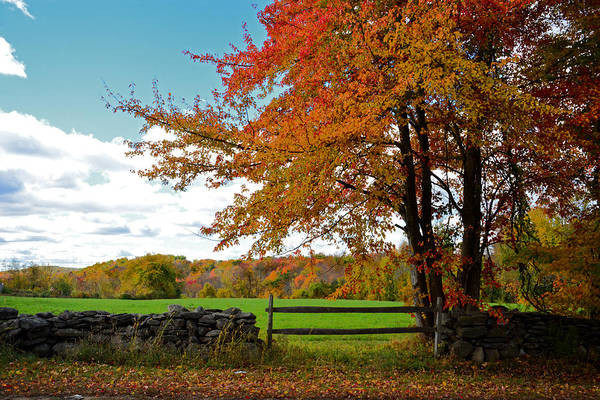 Meadowbrook Photograph - Great Meadowbrook Farm Foliage by Mike Martin