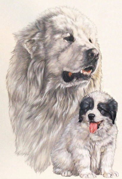 Mixed Media - Great Pryenees And Pup by Barbara Keith