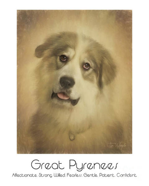 Digital Art - Great Pyrenees Poster by Tim Wemple