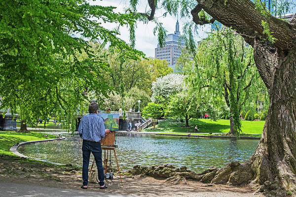 Photograph - Great Rendition Of The Boston Public Garden by Toby McGuire