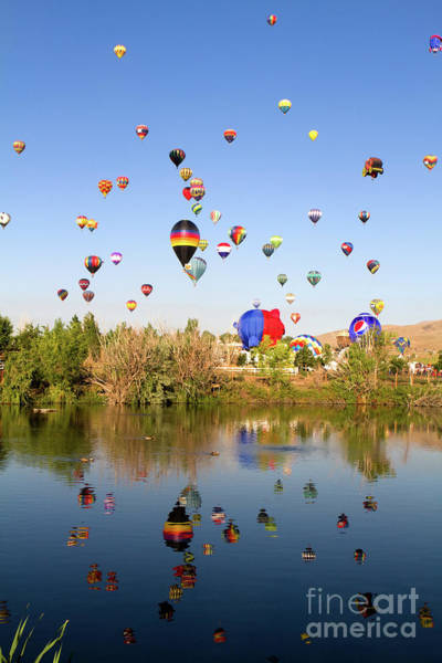 Photograph - Great Reno Balloon Races by Steven Frame