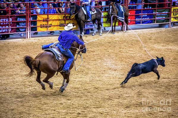 Prca Wall Art - Photograph - Great Roping by Rene Triay Photography