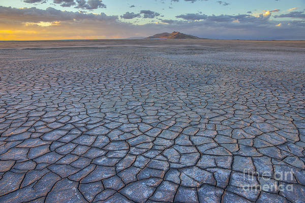 Photograph - Great Salt Lake Mud Flats And Antelope Island by Spencer Baugh